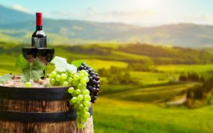 Wineries In The City Of Orlando